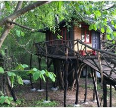 Explore the Authentic Electric Radiators, Outdoor Stone, Wild Forest, Free Park, Cold Day, Warm And Cozy, Lush, Gazebo, Outdoor Structures