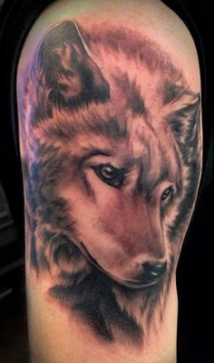 Black and gray wolf tattoo done by Angela Grace
