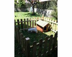 Cuccia-per-cani-taglia-piccola-e-recinto-mai-usati-20131126030358.jpg (400×320)