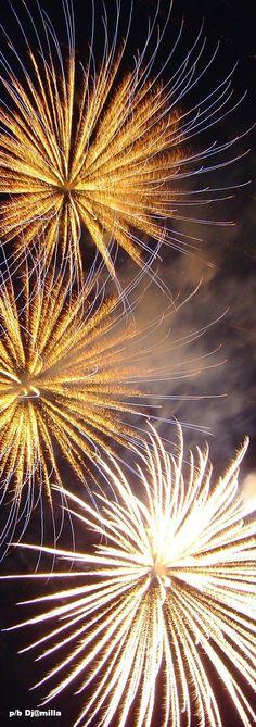 Wishing Everyone a Happy and Healthy New Year! Bozena