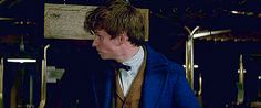 Fantastic Beasts and Where to Find Them is the first film in the Harry Potter universe to not have storyline, plot, or dialogue already laid out in great detail in book form. As such,Fantastic Beasts has a special kind of magic to it, an element of