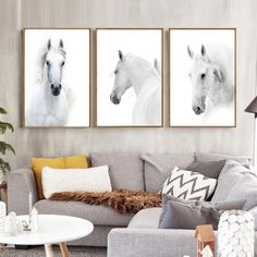 Trend White Horse Canvas Print, Wall Art, Poster, Airbnb Home Decor. Sofa / Cafe / Office / Hotel Painting, Housewarming Gift. 3pcs. Unframed.