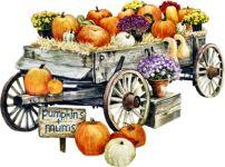 Pumpkins01_dhedey.png