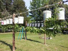 My Topsie Turvie Garden - Homesteading Today - potential for urban farming over contaminated soil prior to remediation