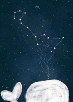 I'm Obsessed With The Night Sky So I Illustrated Arctic Constellations Star Constellations, To Infinity And Beyond, Cute Illustration, Stars And Moon, Night Skies, Cute Wallpapers, Cute Art, Art Photography, Night Photography