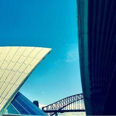 Spring has definitely sprung in Sydney #operabar #spring #sydneyharbour #sydney #sydneyoperahouse #sydneyharbourbridge #loveoperabar @the_keen_eye by operabarsydney http://ift.tt/1NRMbNv