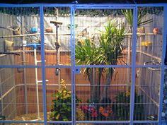 bird aviary supplies