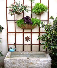 Flowers in basket on trellis wall