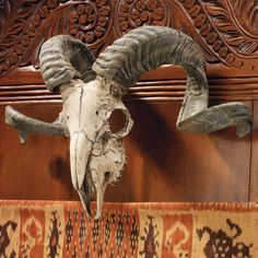Design Toscano Corsican Ram Skull and Horns Wall Trophy - CL3377