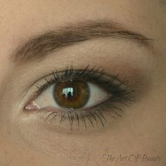 The Art Of Beauty: Natural Eye Tutorial