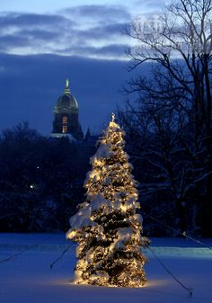 Merry Christmas from Notre Dame! | Christmas at Notre Dame ...