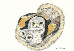 Cute owls illustration  Pinned by www.myowlbarn.com