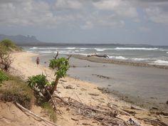 A solitary walker on the beach headed back to a condo or hotel room at Kauai Beach Resort...