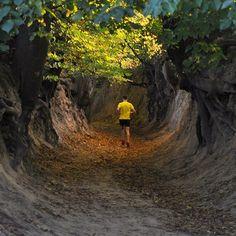 Trailrunning (Kazimierz Dolny - Poland) #nbrteam #naturalbornrunners