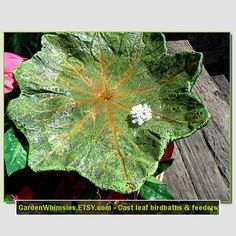 Asian Mayapple cast leaf birdbath/feeder