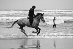 "amazing.  Every person who has a horse dreams of galloping on the beach.  Years ago used to do it into and along the Vermilion River with the ""Saddle Bags"".  Great fun and memories."