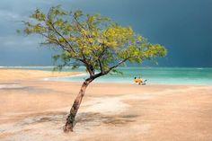 The Dead Sea Coast