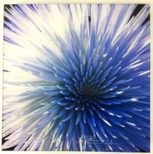 Bring nature's most delicate creations to your living room with flower wall art from LIK Squared. Define your space with gallery inspired flower wall decor for Peter Lik Photography, Photography For Sale, Stunning Photography, Macro Photography, Vintage Photography, Landscape Photography, Flower Wall Decor, Art Auction, Life Is Beautiful