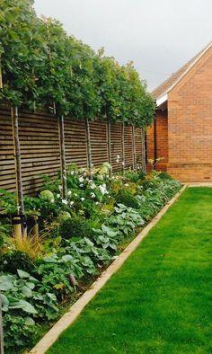 100 Backyard decoration Design Ideas - Garden Design for Small Gardens Small Backyard Landscaping, Backyard Garden Design, Small Garden Design, Landscaping Ideas, Backyard Ideas, Backyard Designs, Backyard Patio, Rectangle Garden Design, Privacy Landscaping