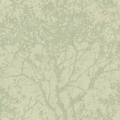 Shadow - Willow (1978/629) - Prestigious Wallpapers - A deeply creased, textured italian vinyl wallcovering with an all over tree branch design, creating a subtle background. Shown in the soft willow green. Please request sample for true colour match.