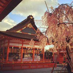 伏見稲荷大社 (Fushimi Inari Shrine)
