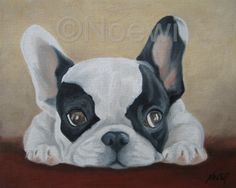 FRENCH BULLDOG Original Oil painting by NOEWI dog puppy portrait