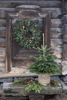 Outdoor Christmas Decorations, Christmas Wreaths, Holiday Decor, Scandinavian Holidays, Seasons, Plants, Cabin Fever, Advent, Fashion Inspiration