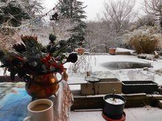 Eigenheim Forum - Mein #Garten im #Winter