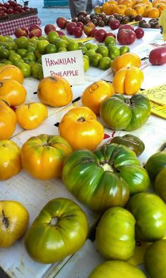 #farmersmarketnyc - #Brooklyn Borough Hall Greenmarket has colorful #tomatoes via @Traveled_Eats on Twitter