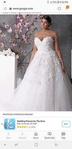 85 Best wedding images  3b6baaa73c92