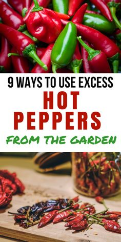 DIY Food Preservation Tips and Recipes : Man does my husband ever love hot peppers. We always try to grow them, but this year we have a bumper crop of excess hot peppers. High Calorie Diet, Real Food Recipes, Healthy Recipes, Healthy Food, Sauce Recipes, Tuna Recipes, Healthy Weight, Veggie Recipes, Easy Recipes
