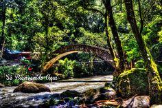 Conoce la increíble gama de ecosistemas y maravillas naturales que #Michoacán tiene para ti, este próximo #Verano elige el destino ideal para escaparte a uno de los estados más atractivos de #México #SéBienvenidoAquí