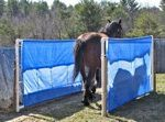 Picture list and description of desensitizing obstacles. There are some great ideas on this site. This will definitely help out my horses that I am training and it will be fun too.