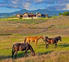 Scenic Rural Home in Montana: Stock Farm Residence