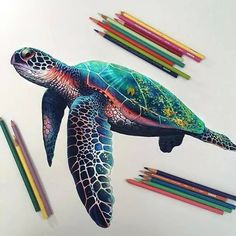 """""""Sea Turtle""""Art created with colored pencils. Colorful Drawings, Cool Drawings, Realistic Drawings, Beautiful Drawings, Drawing Sketches, Illustration Au Crayon, Nature Illustration, Color Pencil Art, Colored Pencil Artwork"""