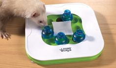 Teach & Treat Toy. Different difficulty settings. Would be cool to see my ferrets figure it out.