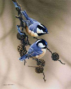 РАБОТЫ ХУДОЖНИКА RUUD WEENINK птички