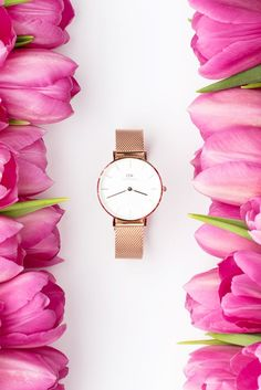Styling and Product photography by Shay Cochrane for Daniel Wellington.