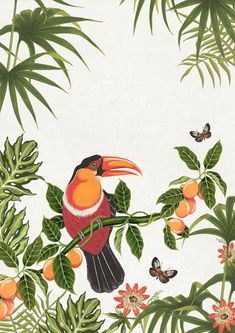 A fascination for all things floral and specialised in creating beautiful botanically inspired illustration. Jungle Illustration, Botanical Illustration, Graphic Design Illustration, Watercolor Illustration, Botanical Fashion, Jungle Art, Bird Artwork, Amazon Art, Botanical Prints