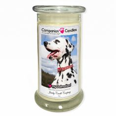 I Love My Dalmation! - Photo Companion Candles - Pet Lover Gifts