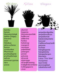 De tre olika växtformerna
