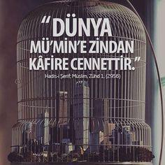 Dünya mümin'e zindan, kâfire cennettir. (Hadis-i Şerif, Müslim, Zuhd 1) #instabeauty #istanbul #turkishfollowers #türk #türkiye #istanbuldayasam #söz #quotes #vecizsözler #Ankara#izmir #Trabzon #Turkish #turkey #Hadith #islam #quranquotes #quranicverse #ayet #MiraclesOftheQuran #quranclub #islamic #Quran #religion #müslüman #mumin #hadis #dua #iman