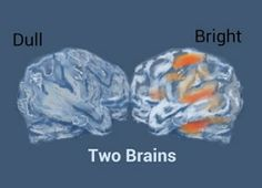 How Reading a Novel can Improve Brain Functions