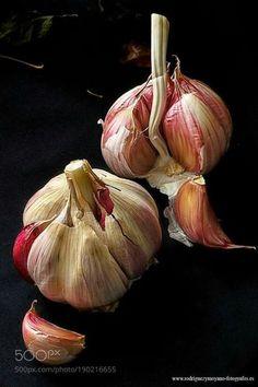 Garlic of luis_rguez – # garlic – # Andrea'sVegetablesDraw – malen – - Obst Dark Food Photography, Still Life Photography, Photography Tips, Iphone Photography, Creative Photography, Vegetables Photography, Still Life Fruit, Fruit Painting, Still Life Photos