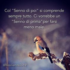 Italian Quotes, Word 2, Day For Night, Sentences, Anatomy, Spirituality, Humor, Instagram, Leo