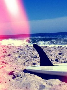 Surfing, the best way to relax (depending on who you ask)