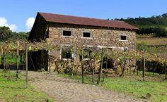 Caminhos de Pedra: um pedaço da Toscana no Brasil | Bento Gonçalves – RS | MATRAQUEANDO