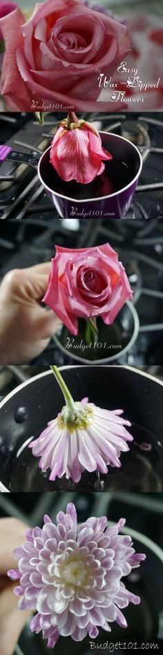DIY Wax Dipped Flowers - Want to save those beautiful Valentines flowers? Here's a simple solution!