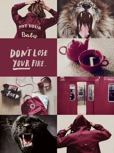Modern aesthetics inspired by the world of Harry Potter. (I don't own any of the pictures used) -REQUESTS CLOSED- Aesthetic Themes, Aesthetic Images, Red Aesthetic, Harry Potter World, Harry Potter Memes, Wolf Spirit Animal, Ginny Weasley, Harry Potter Aesthetic, Hogwarts Houses