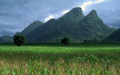 north of thailand | Loei, north Thailand